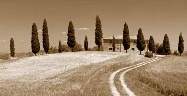 Tuscan Countryside villa with cyprus trees- Tuscan Weddings and Events